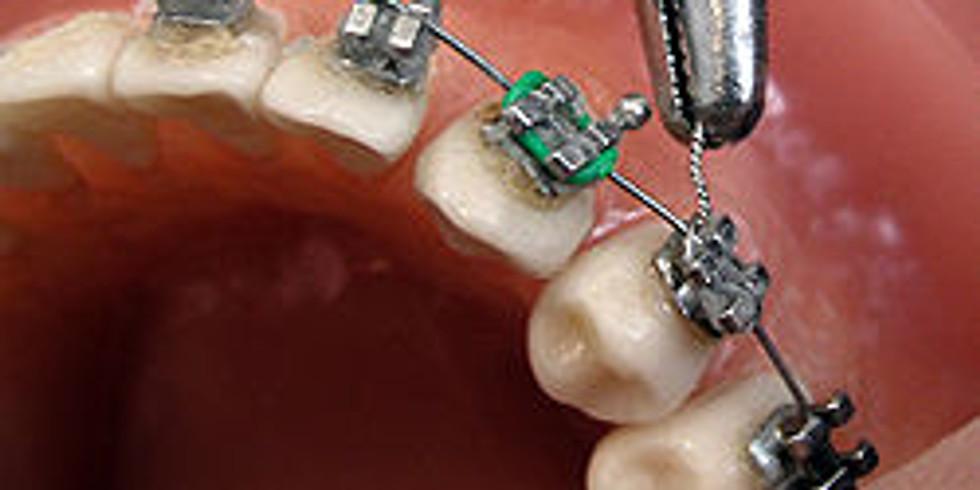 'Orthodontics Starter' program