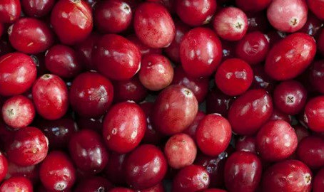 Cranberries and blueberries – why certain fruit extracts could provide the key to fighting tooth dec