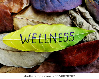 wellness-concept-written-on-leaf-260nw-1