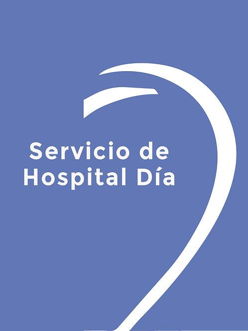 SERVICIO DE HOSPITAL DIA