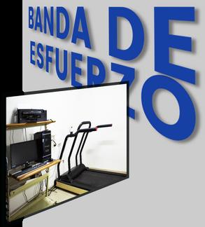 BANDA DE ESFUERZO