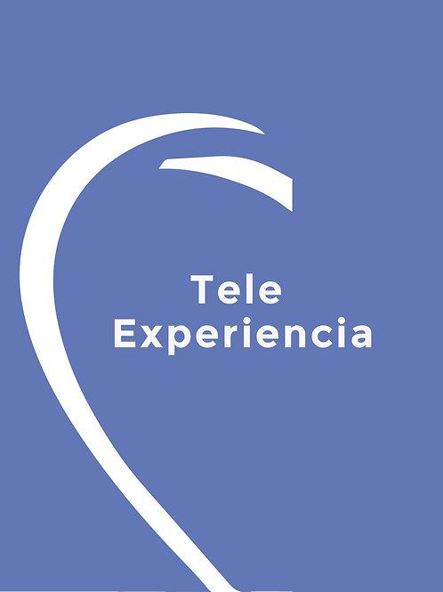 TELE EXPERIENCIA