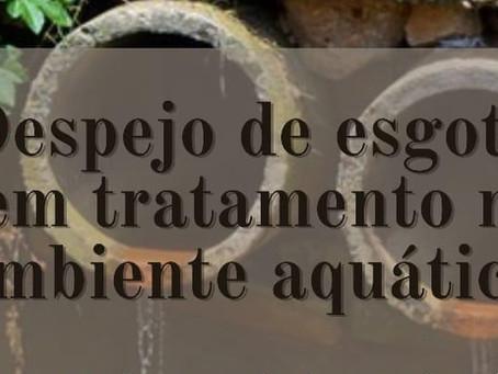 Despejo de esgoto sem tratamento no ambiente aquático