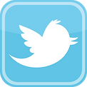 twitter logo_edited.png