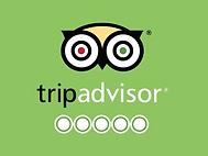Avis Trip Advisor.png