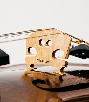 Violin services