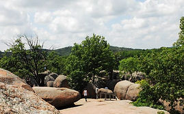 Elephant rock.jpg