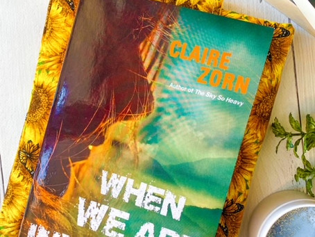 When We Are Invisible, by Claire Zorn