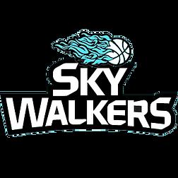 Sky-Walkers.png