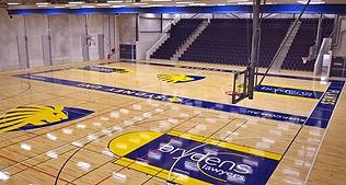Basketball in Glebe.jpg