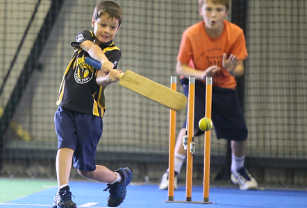 ciscjuniorindoorcricket.png