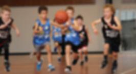 Bondi-Lions-Basketball.jpg