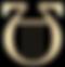 Algortythme USA Logo