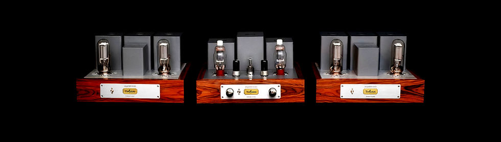 Thivan Labs 845 Silver Tri-Block Amplifier Hero Shot.jpg