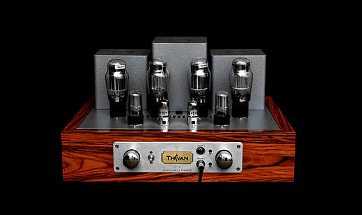 Thivan Labs DL50-Headphone-and-Speaker-Amplifier_auto_x2_colored_toned.jpg
