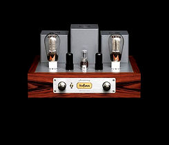 Thivan Labs 300B Amplifier.jpg