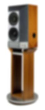 Rethm Aarka Monitor Loudspeaker Rear View.jpg