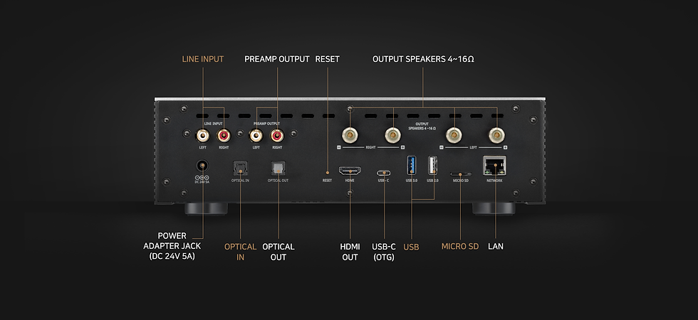 HIFI RSE RS201E Rear Panel Connections.png