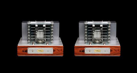Thivan Labs SUN 833 Mono  Power Block Pair.jpg