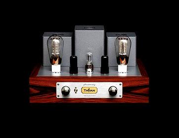 Thivan Labs 300B Amplifier Hero Shot.jpg