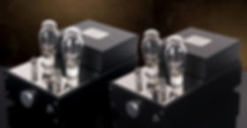 Audion Silver Night 300B Monoblock Amplifier PSE/PP