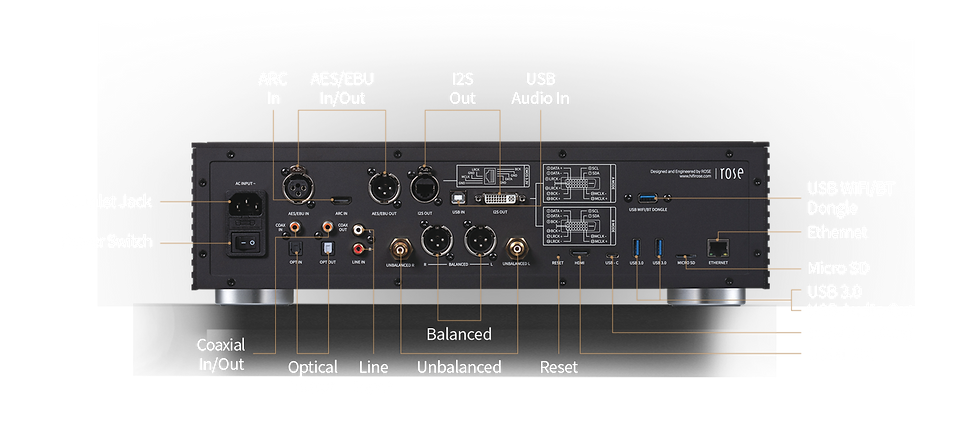 HiFi Rose RS150 Rear Panel Connections.png