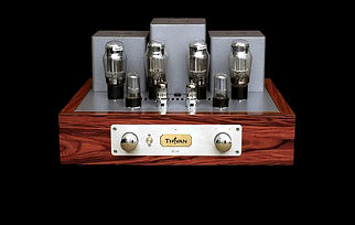 Thivan Labs DL50 Front.jpg
