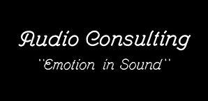 Audio-Consulting-logo 2_photos_v2_x2.jpg