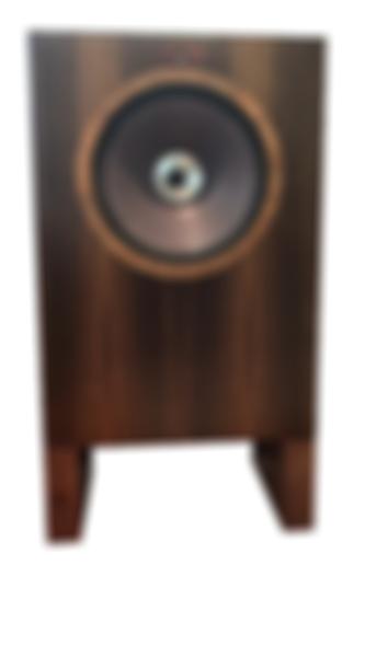 Coherent Audio Fifteen Loudspeaker