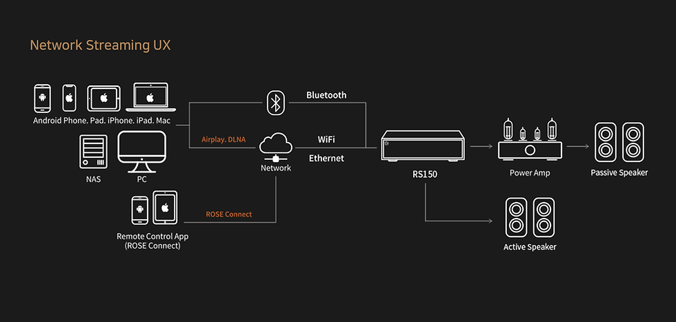 HiFi Rose RS150 Connectivity.png