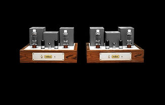 Thivan Labs 811A Monoblock Amplifier.jpg