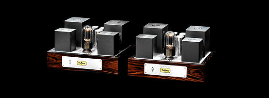 Thivan Labs 211SE- Power-Monoblock Amplifier.jpg
