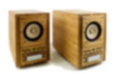 Tri art Audio Mini Monitor - side-front view.jpg