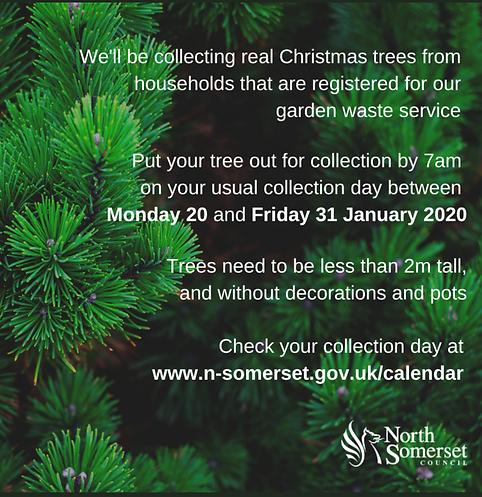 Monday Jan 20 Xmas tree collection start