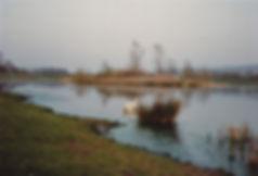 Backwell Lake 1970s.jpg