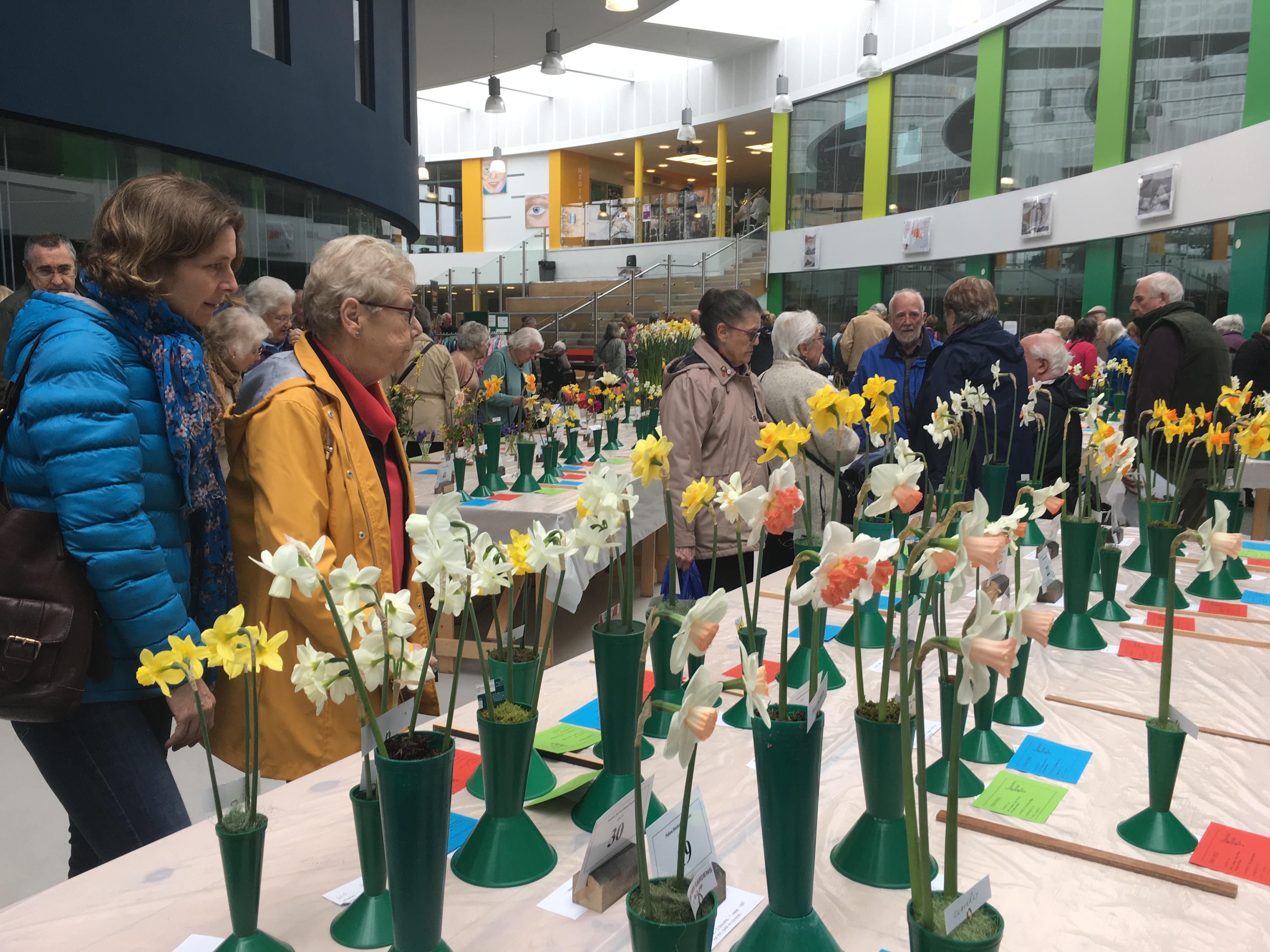 Nailsea Spring Show 2018