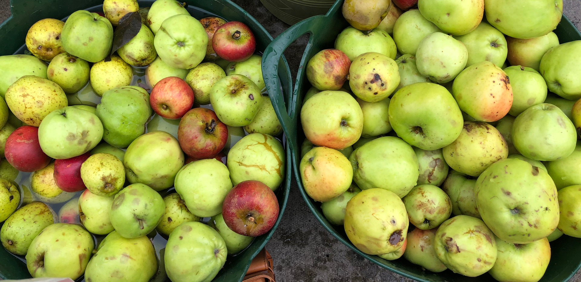 Nailsea Apple Day