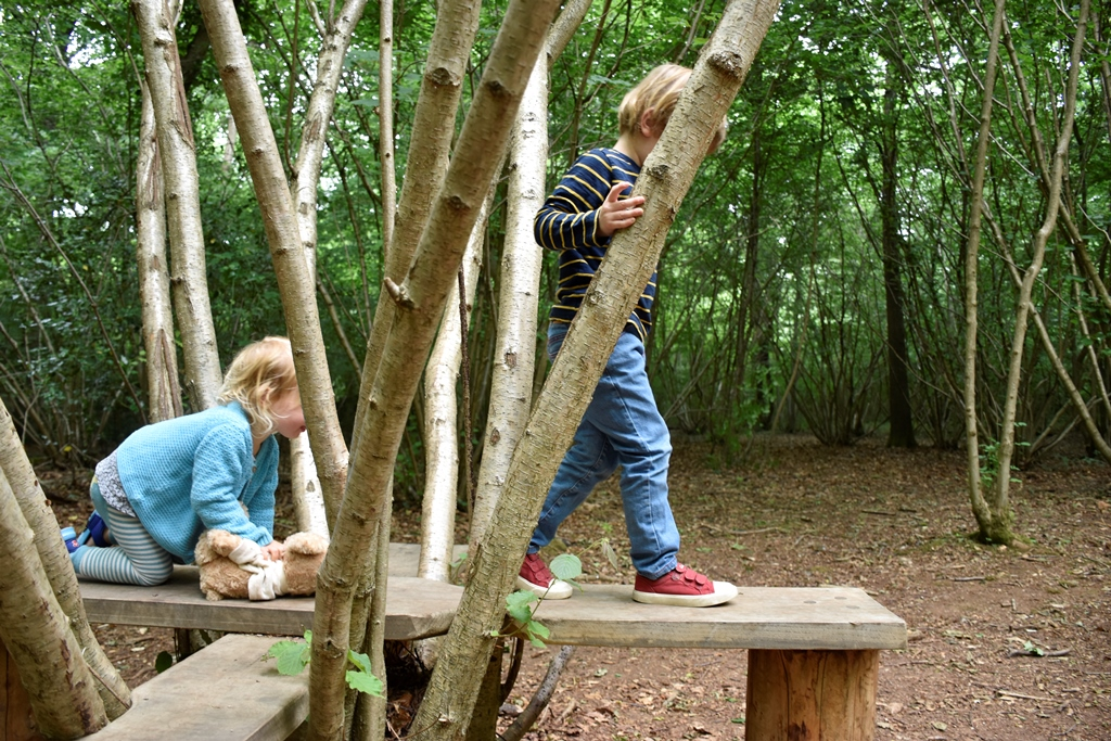 Children playing on coppice crossings at Leigh Woods 2 (c) National Trust-Alana Wright