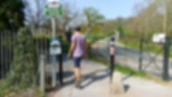 Ashton-Court-Greenway-1-photo-Greenways-