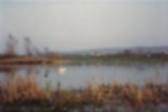 Backwell Lake 1970s 1.jpg