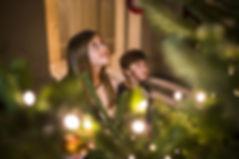 Tyntesfield_Christmas_Rob Stothard.jpg