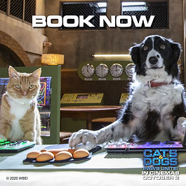 CATS AND DOGS BOOK NOW.jpg