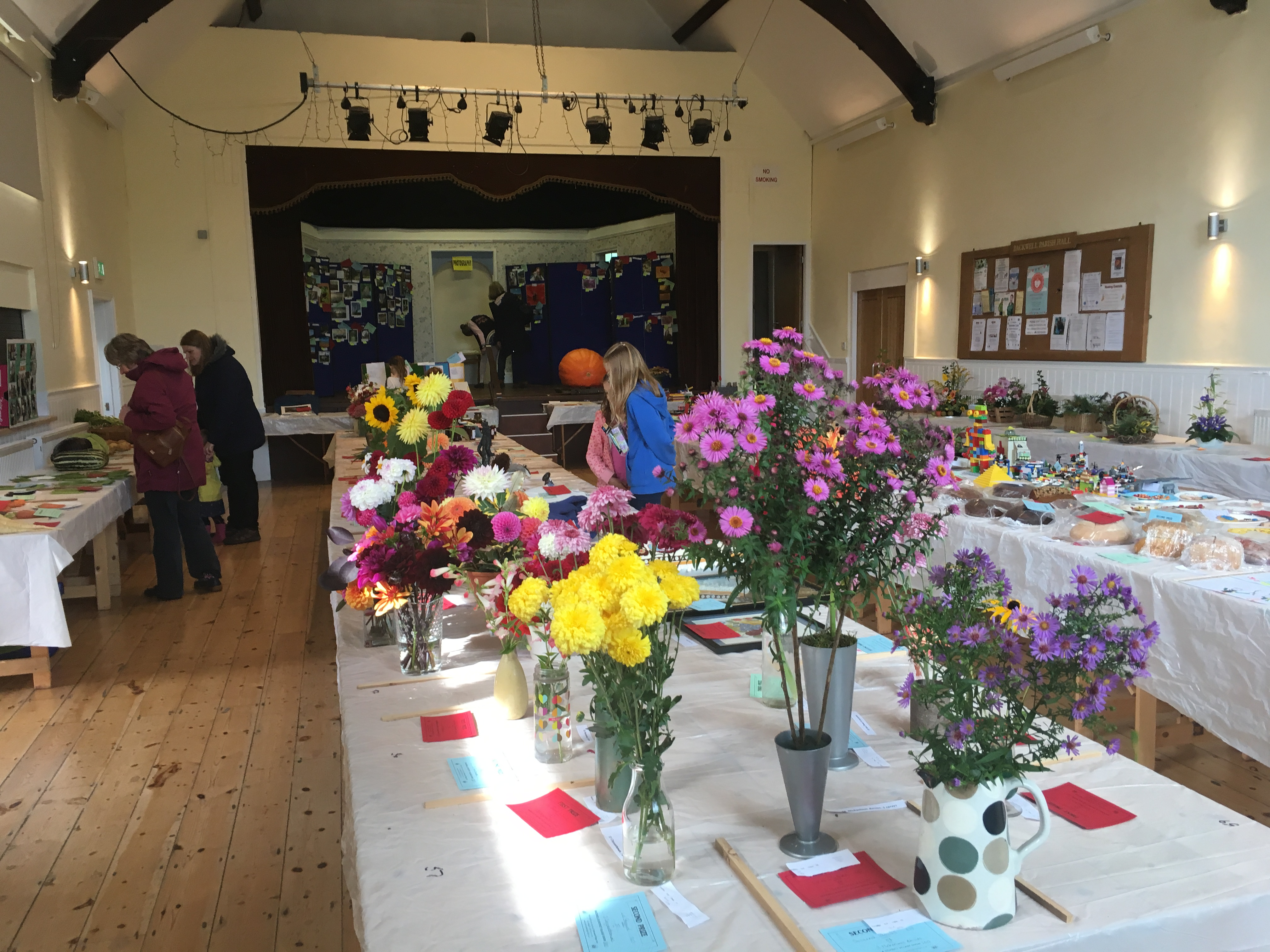 Backwell Village Show 2017