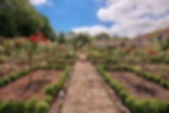 the-walled-gardens-at.jpg
