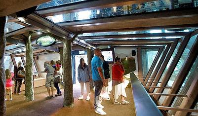 bristol-zoo-gardens-880px-880x515.jpg