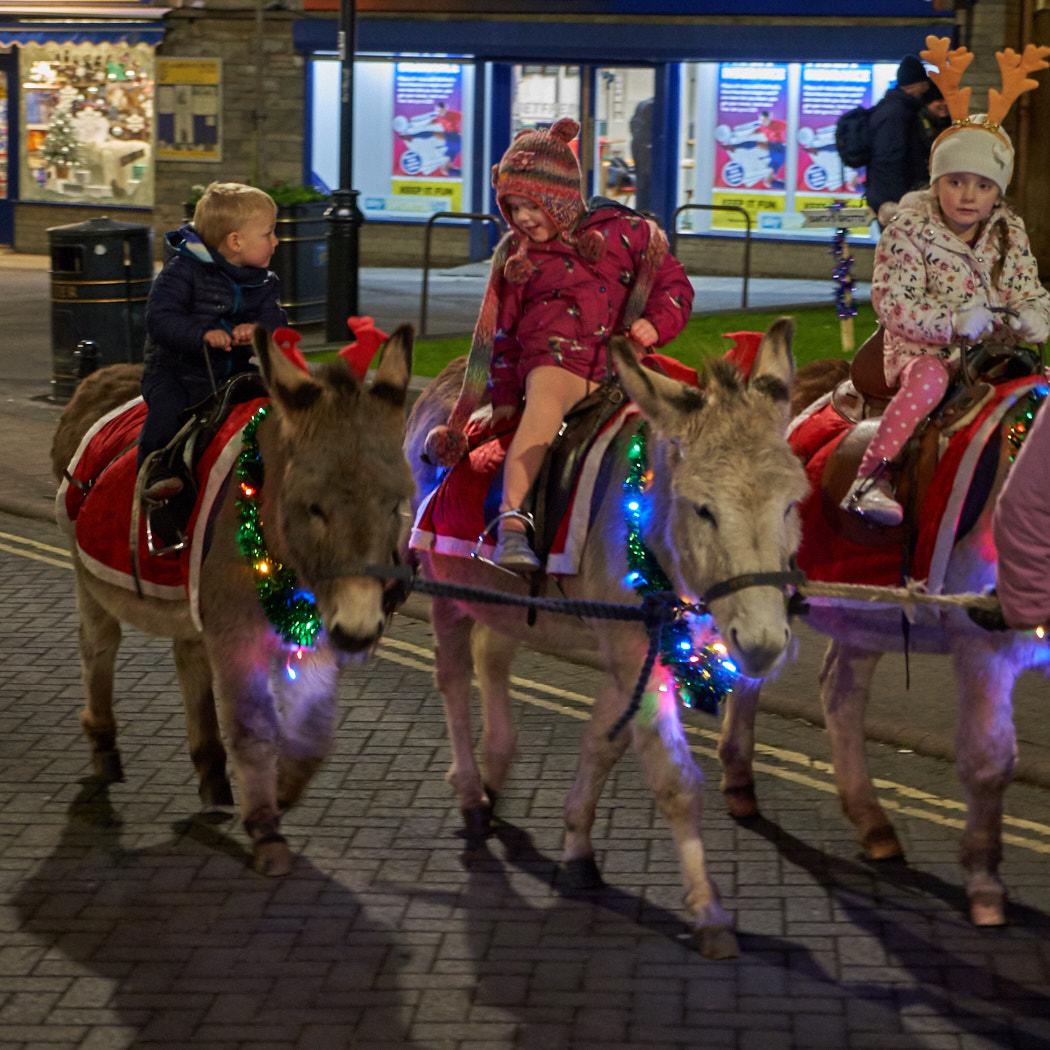 26. Donkey Ride_Sarah Robbins