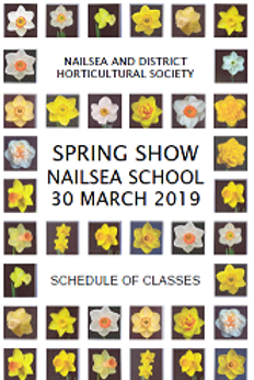 flower show.png