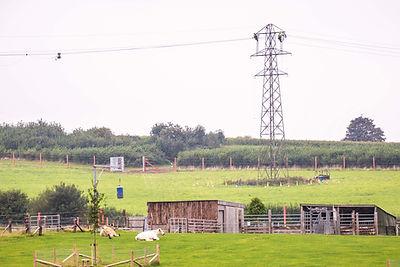 Pylon conductors being dismantled by Balfour Beatty, Noah's Ark Zoo Farm - Doug Evens.jpg