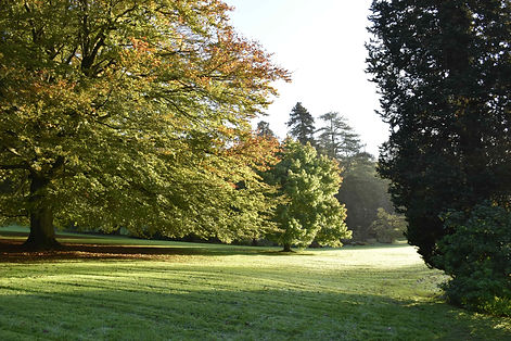 The Grounds in Autumn (c) National Trust