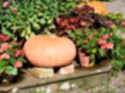 Tyntesfield poetic pumpkin 1 (c) Nationa